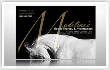 Madeline's Equine therapy & Maintenance